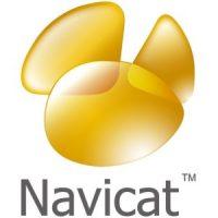 Navicat Premium 15.0.26 Full Crack With Registration Key Free 2021